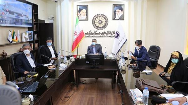 اجرای 4 طرح گردشگری در استان کرمان آنالیز شد